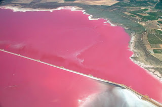 Danau Salina de Torreveija